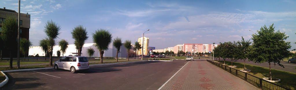 Жлобин-Майами, Жлобин