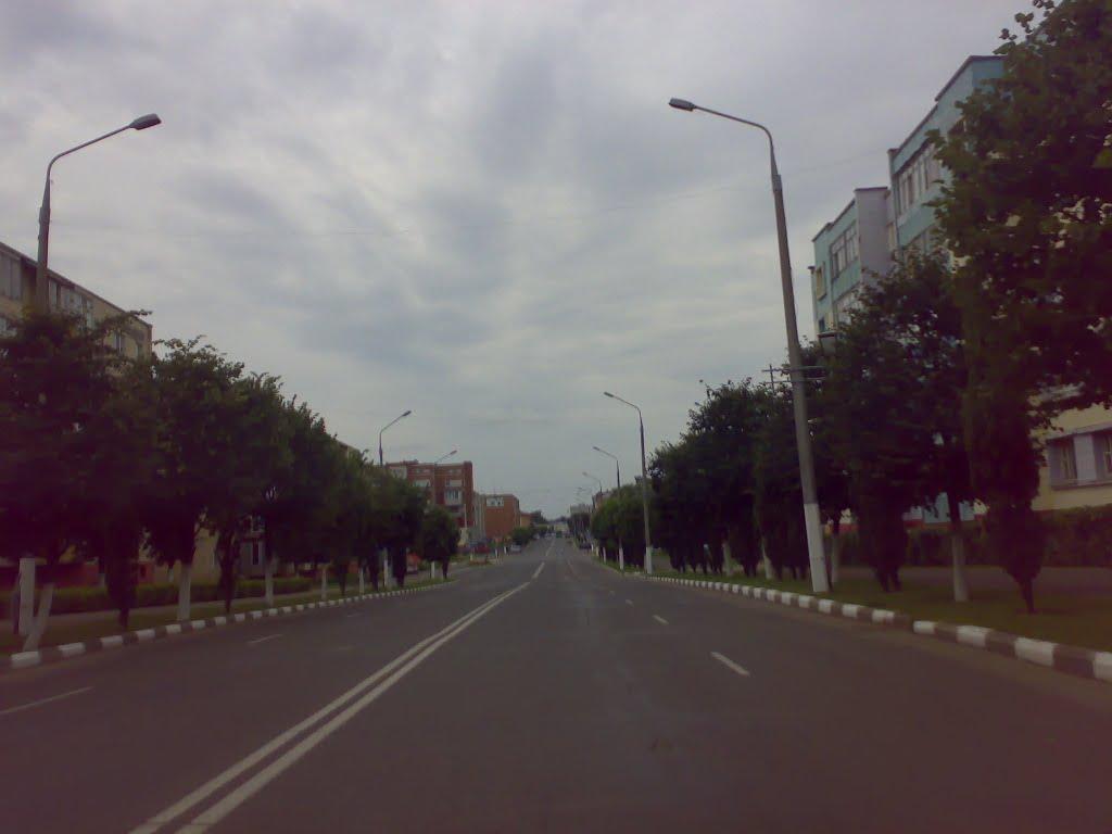 Жлобин. улица Первомайская, Жлобин