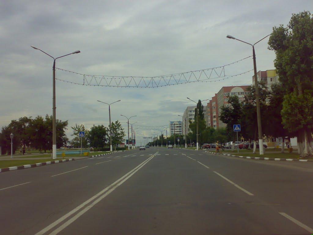 Жлобин. улица Барташова, Жлобин