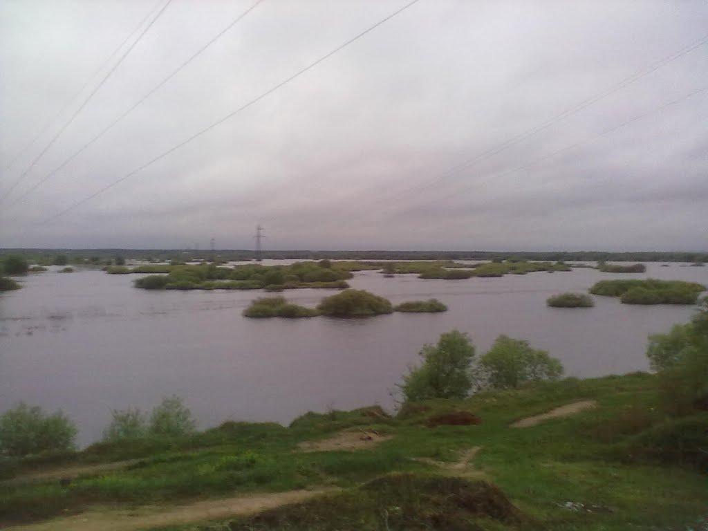 Разлив Днепра, Жлобин