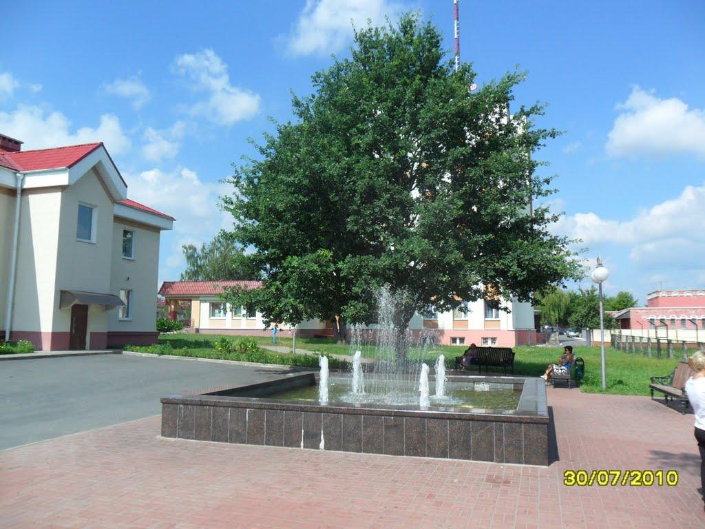 Беларусь. Лельчицы. Городской фонтан., Лельчицы