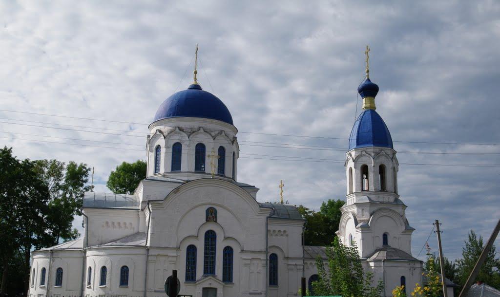 Церковь в Петрикове, Петриков