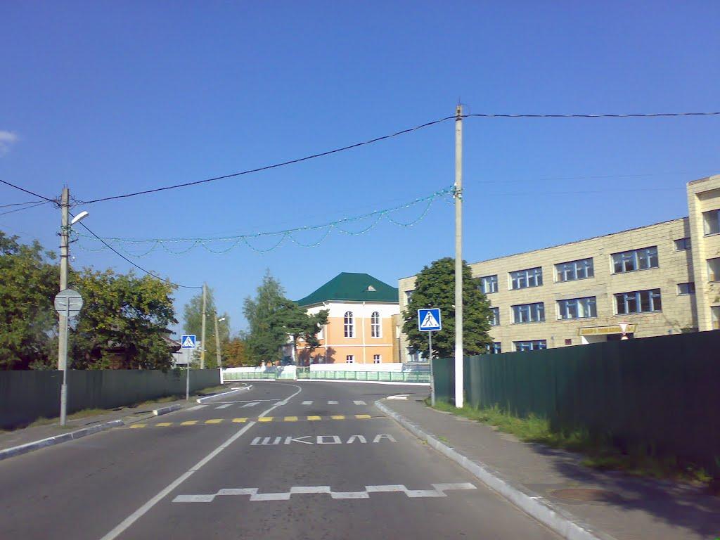 улица Коммунальная. Школа, Петриков