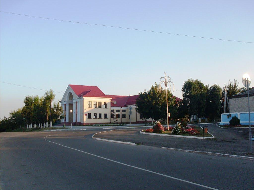 Дом культуры, Петриков