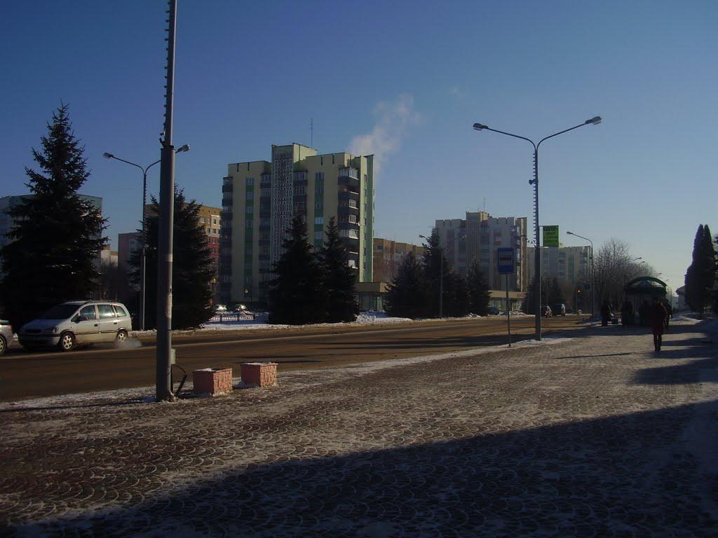 советская 83, Речица
