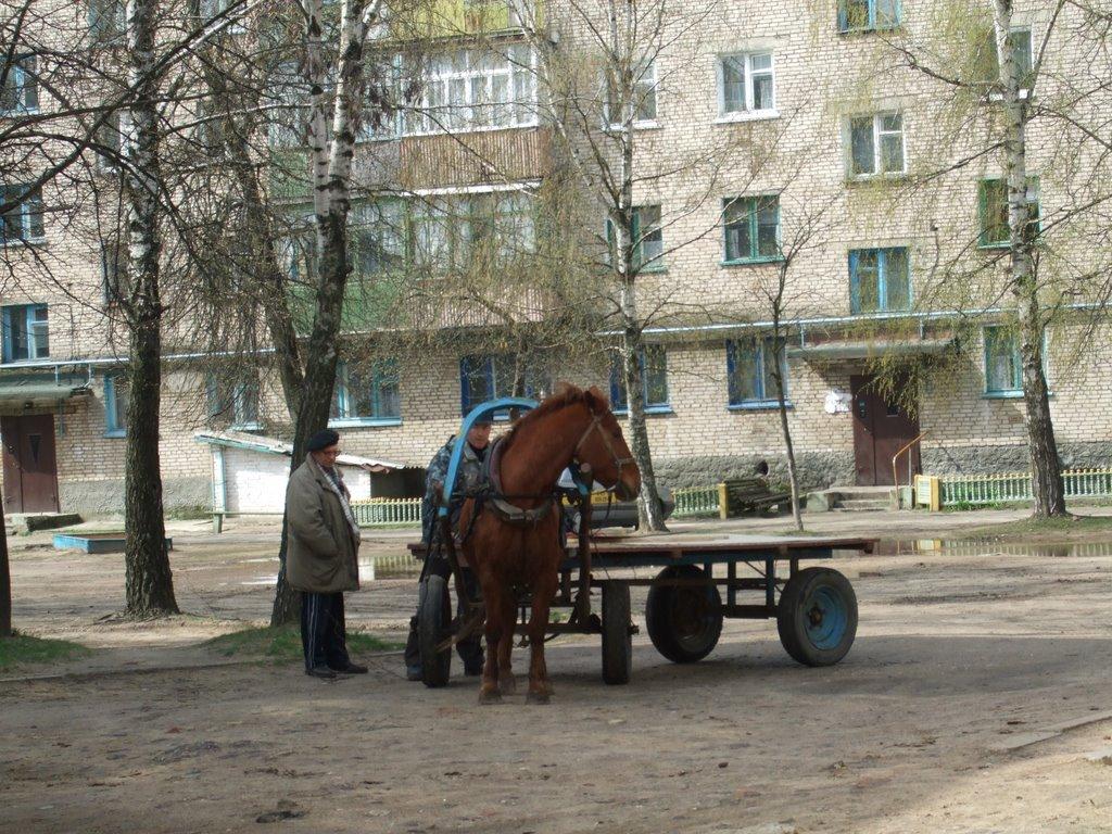 Городской двор, Рогачев