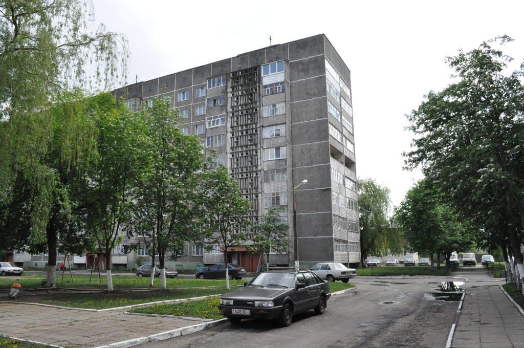 Рогачёв д.3 Парижской-камунны, Рогачев