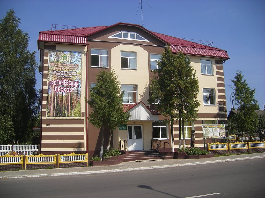 Обновленное здание Рогачёвского лесхоза, Рогачев