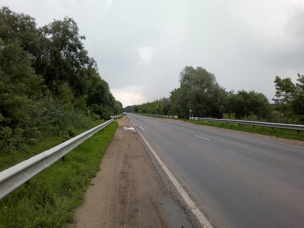 6.07.2011, Рогачев