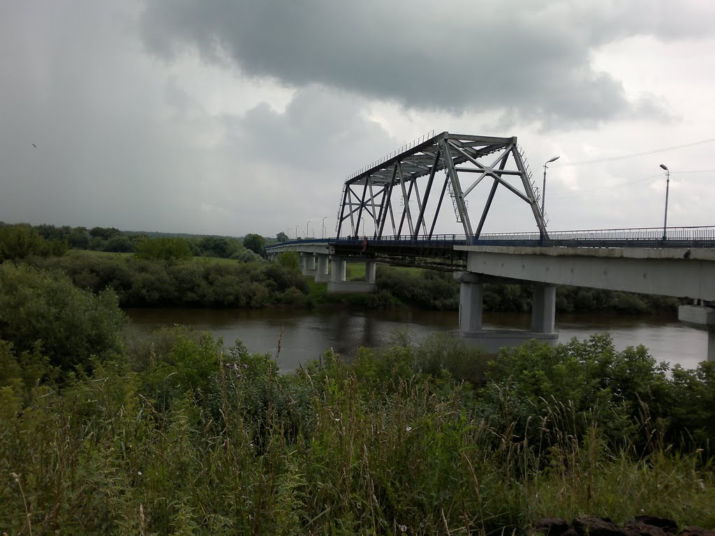 мост через Днепр 6.07.2011, Рогачев
