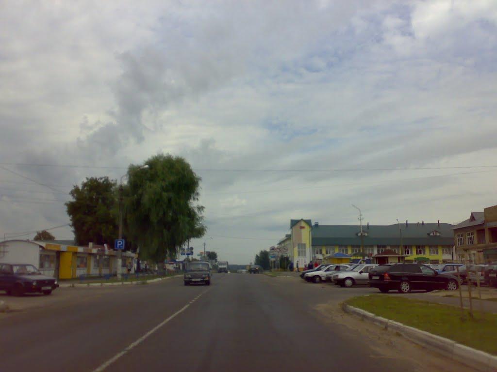 Р-43 Кричев-Бобруйск в Рогачеве, Рогачев