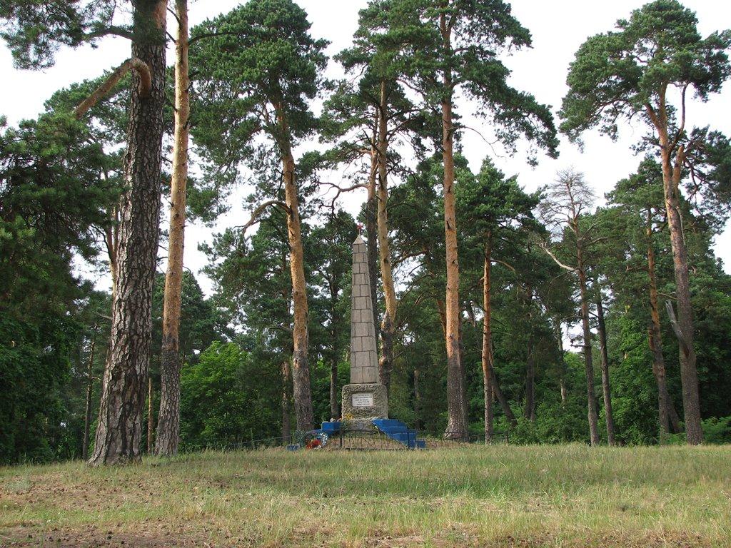 Памятник, Рогачев