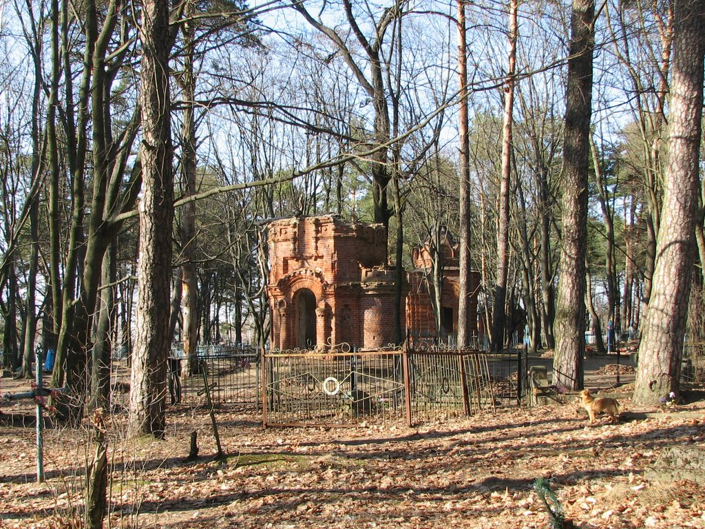 Old graveyard, Рогачев
