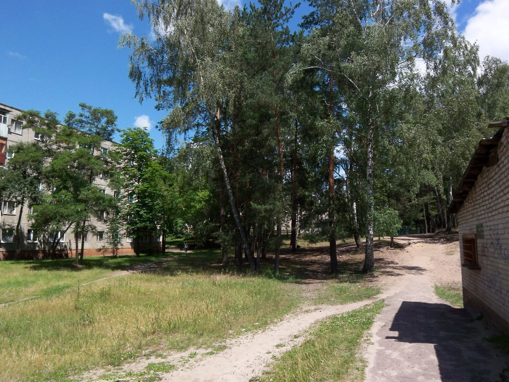 Small hill, Светлогорск
