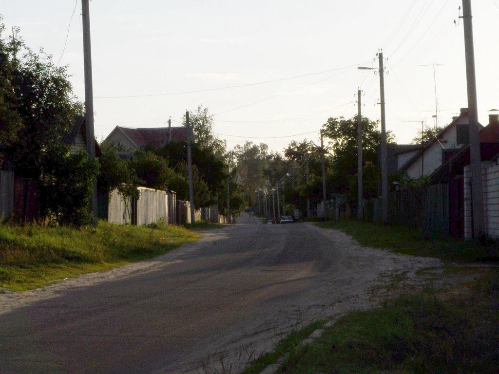 Street in Shacilky village, Светлогорск