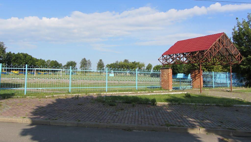 стадион, Дятлово