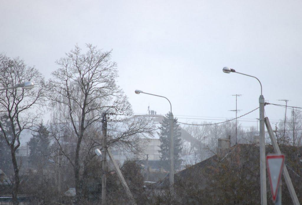 Ферроэквинологи на Шведской горе, Волковыск