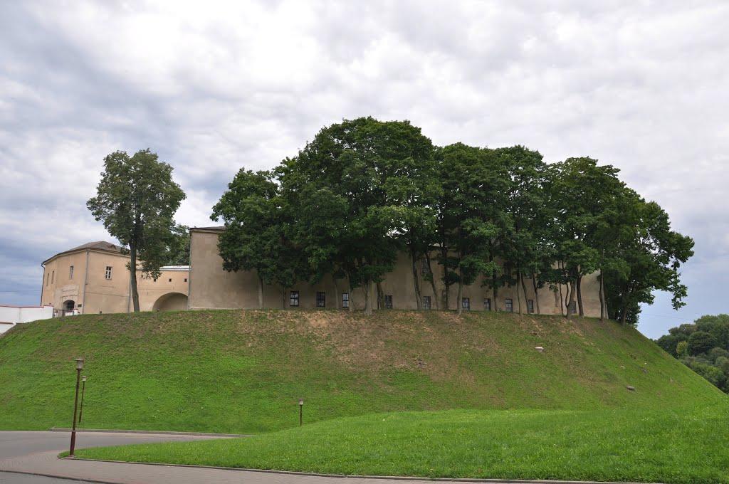Гродно. Старый замок / Grodno. Old Castle, Гродно