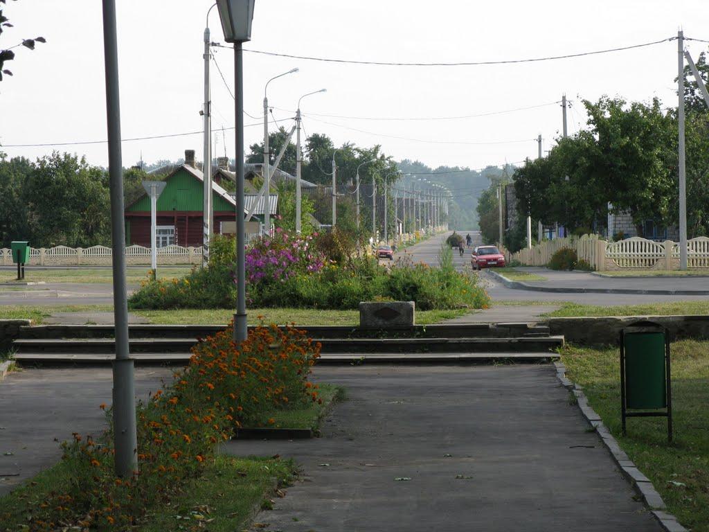 Zheludok park (view to Krasnopartizanskaya st)), Желудок