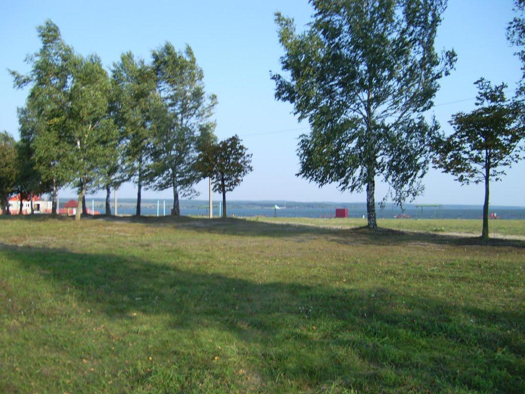 Зельвенское водохранилище, Зельва