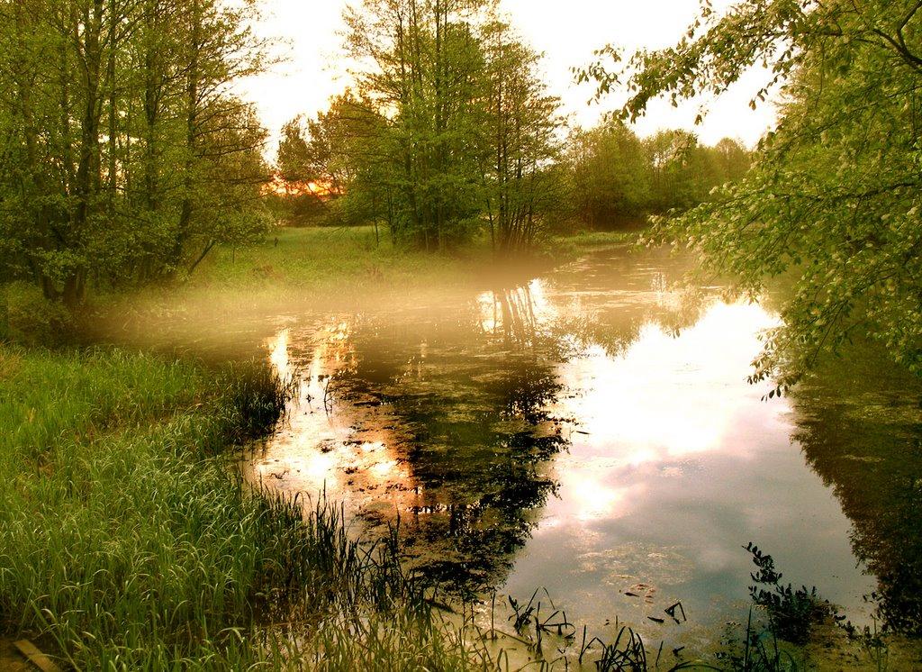 Morning Fog, Козловщина