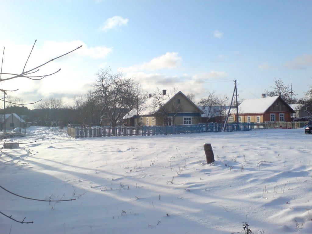 Дом Витковских, Островец