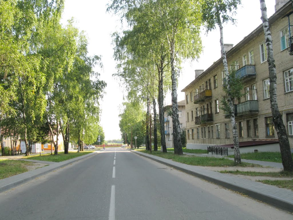 "in the microdistrict ""Zapadny"", Сморгонь"