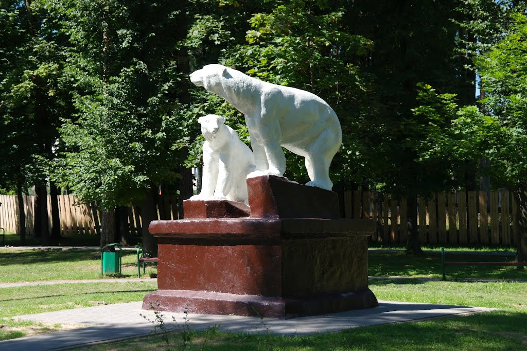 Медведи, Борисов