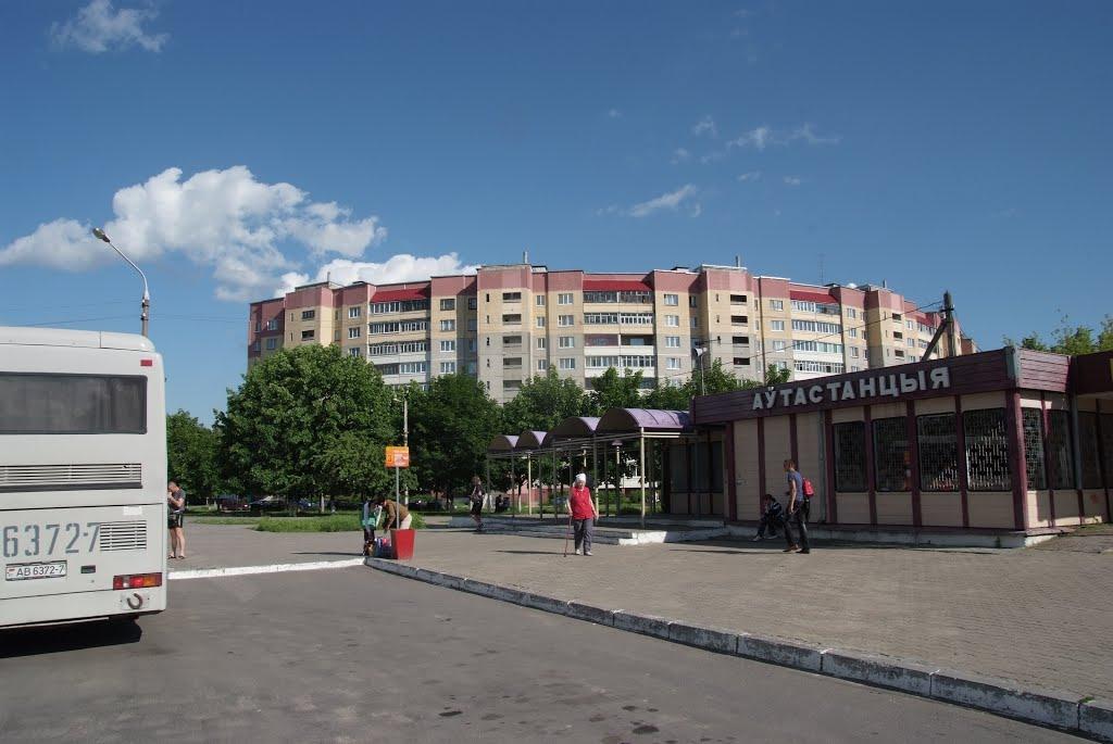 Автовокзал Жодино, Жодино