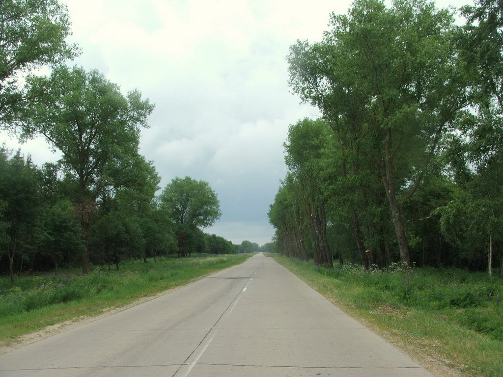 Rural Belarussian road, Столбцы
