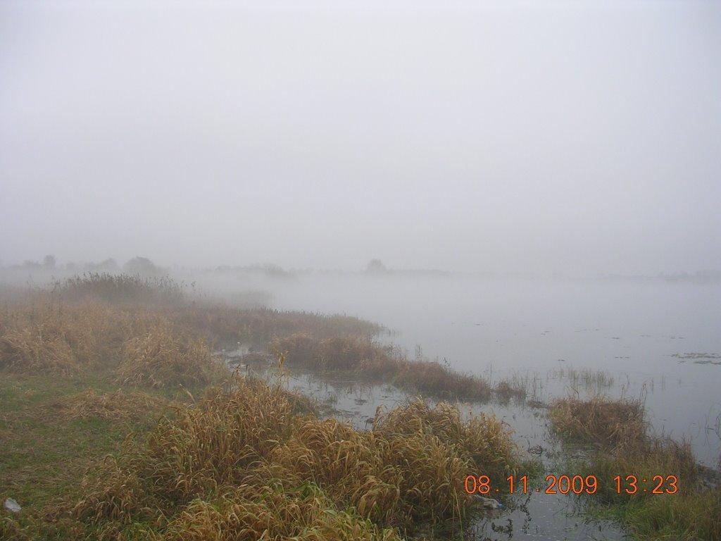 Туман на Возеры, Узда
