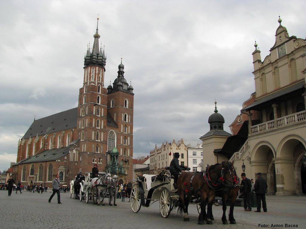 The Main Square, Kraków / Rynek Główny w Krakowie / Krakkó főtere / Piaţa principală din Cracovia (Foto: Anton Bacea), Краков (ш. ул. Вроклавска)
