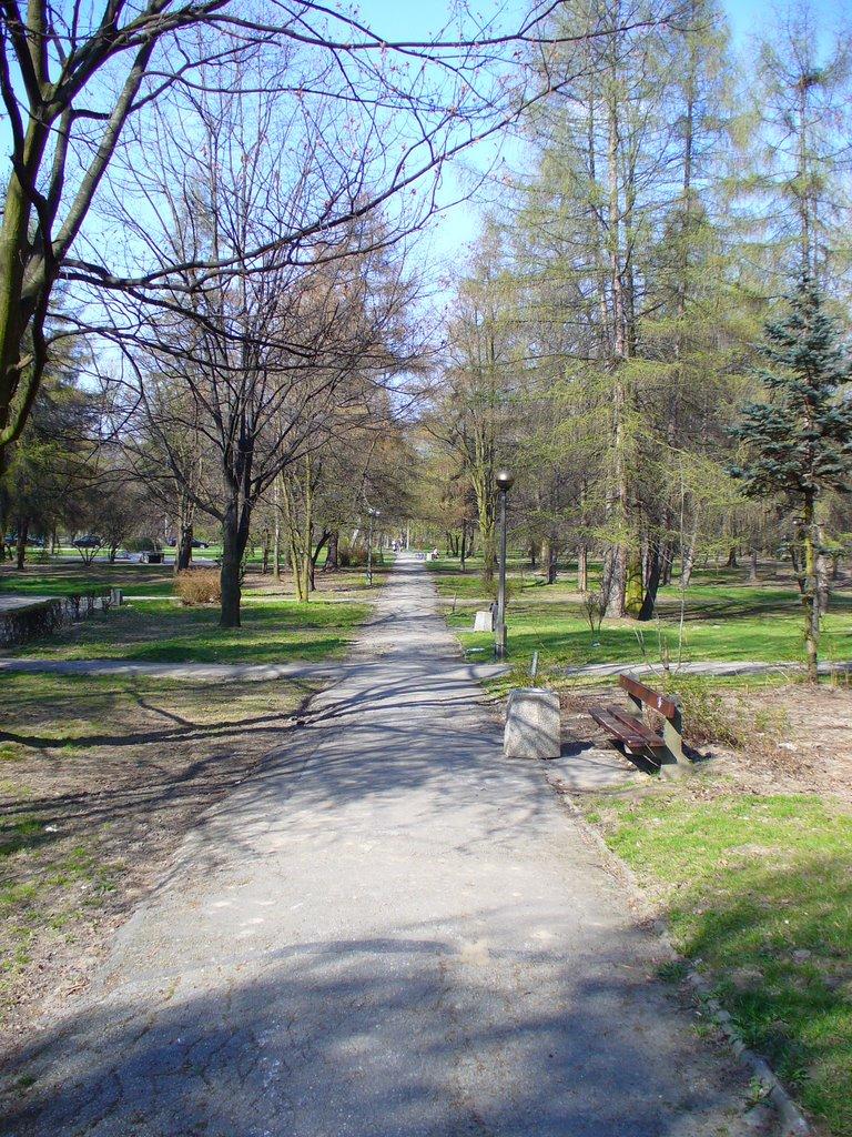 El parque 1, Освецим