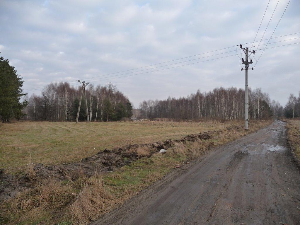 ul. Bielówek - wschód/east, Пьястов