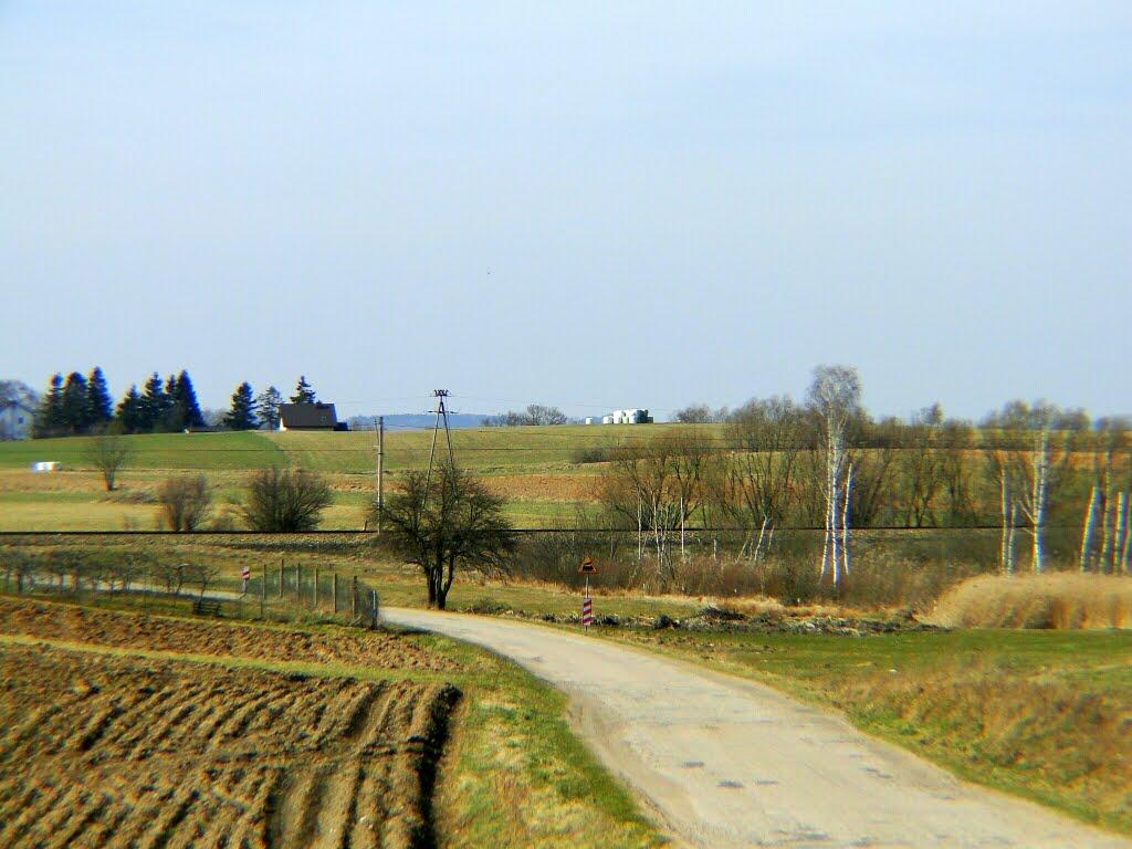 Wiosenne pola i łąki., Граево