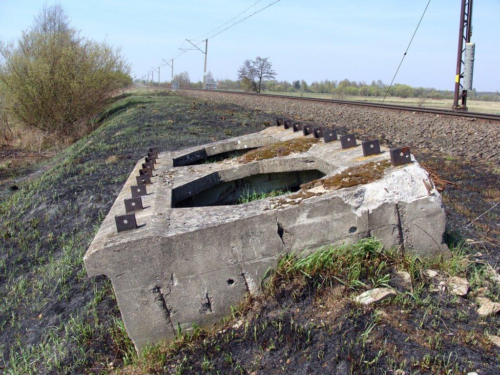 resztki starego mostu kolejowego na rzece Kulikówka (kwiecień 2009), Замбров