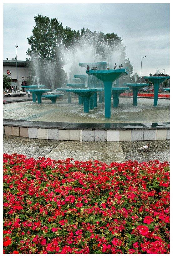 fontanna na Skwerze Kościuszki, Gdynia | fountain at Kosciuszko Sq in Gdynia, Гдыня