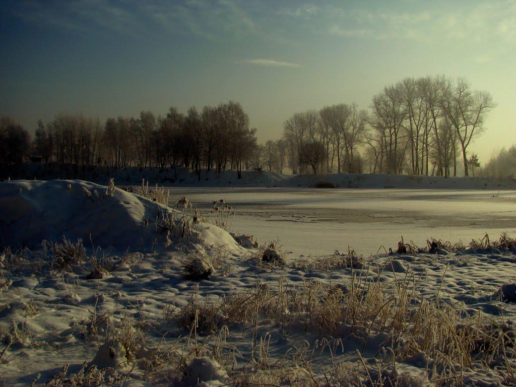 Siemianowice, Staw Rzęsa - Zima 2010, Честохова