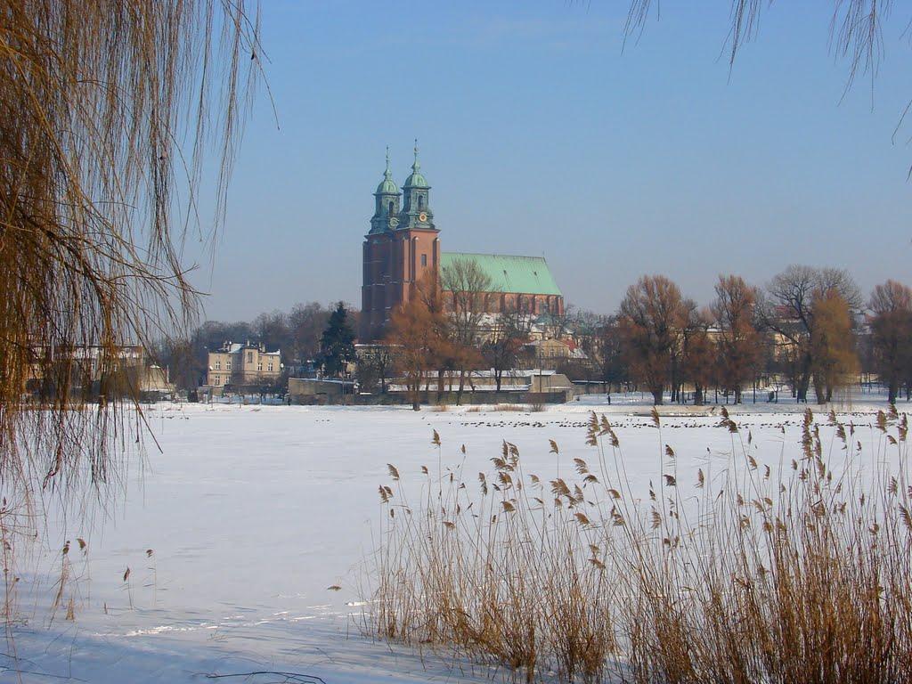 Gniezno  -  zima  2010 ., Сандомерж