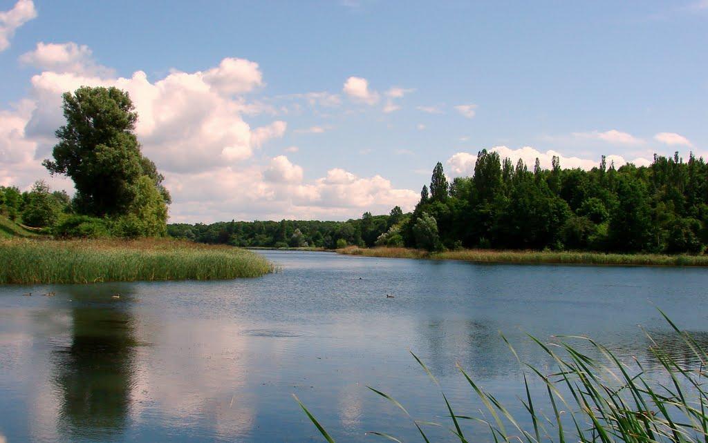 Największe i  najładniejsze  jezioro w Gnieźnie   WINIARY., Сандомерж