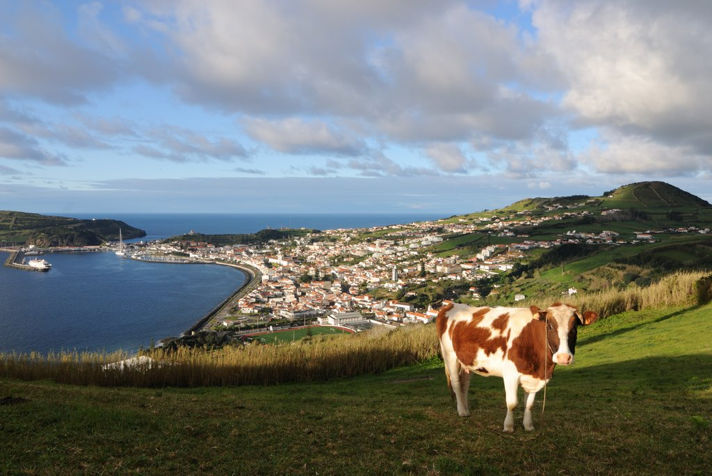 Blick auf Horta, Вила-Нова-де-Гайя