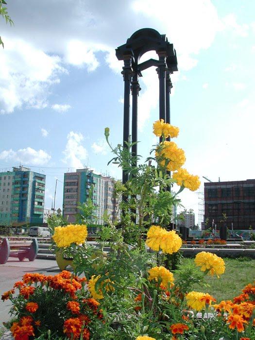 Памятник в центре, Радужный