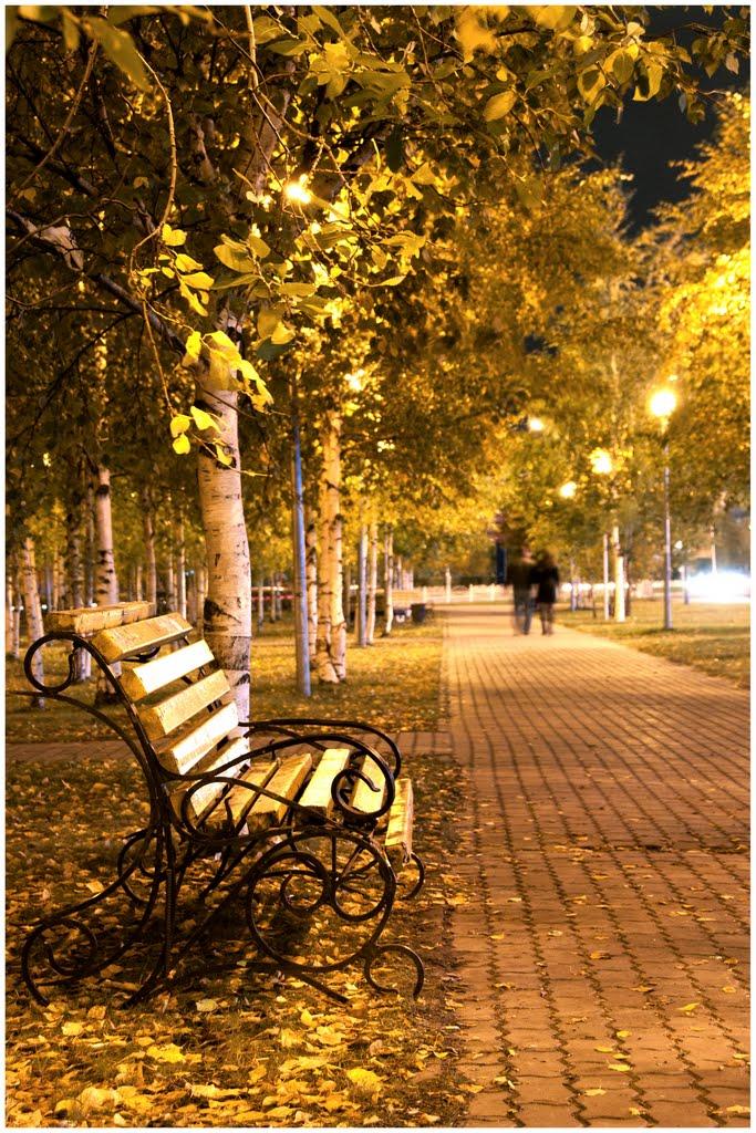Вечерняя скамейка..., Сургут