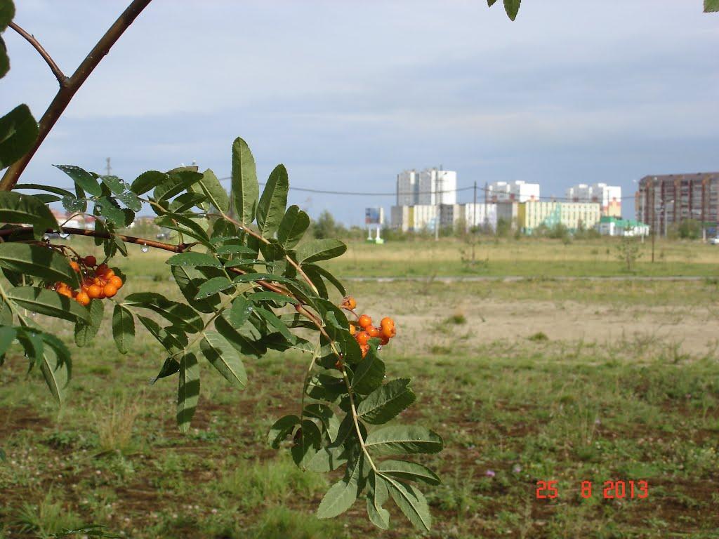 Рябинка и Излучинск, Излучинск