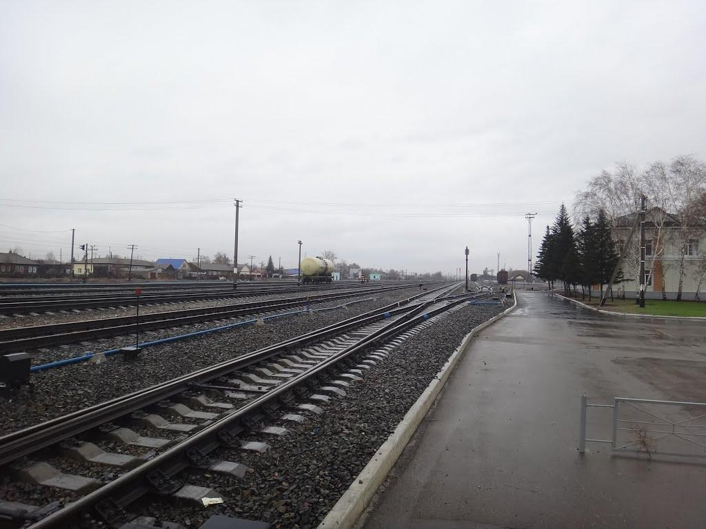 Станция Алейская, Вид на север, Алейск