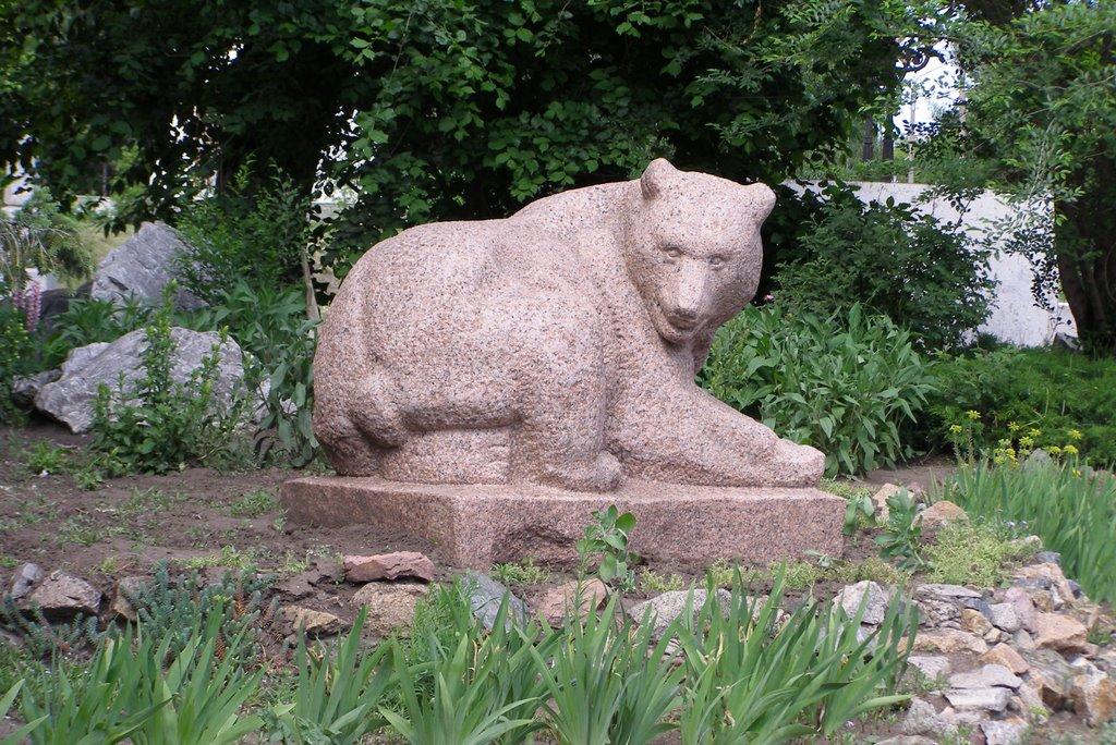 Городской медведь, Барнаул