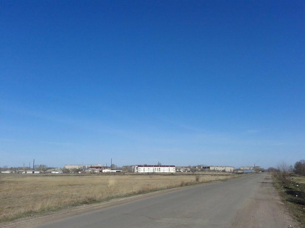 город Горняк вид с объездной дороги, Горняк