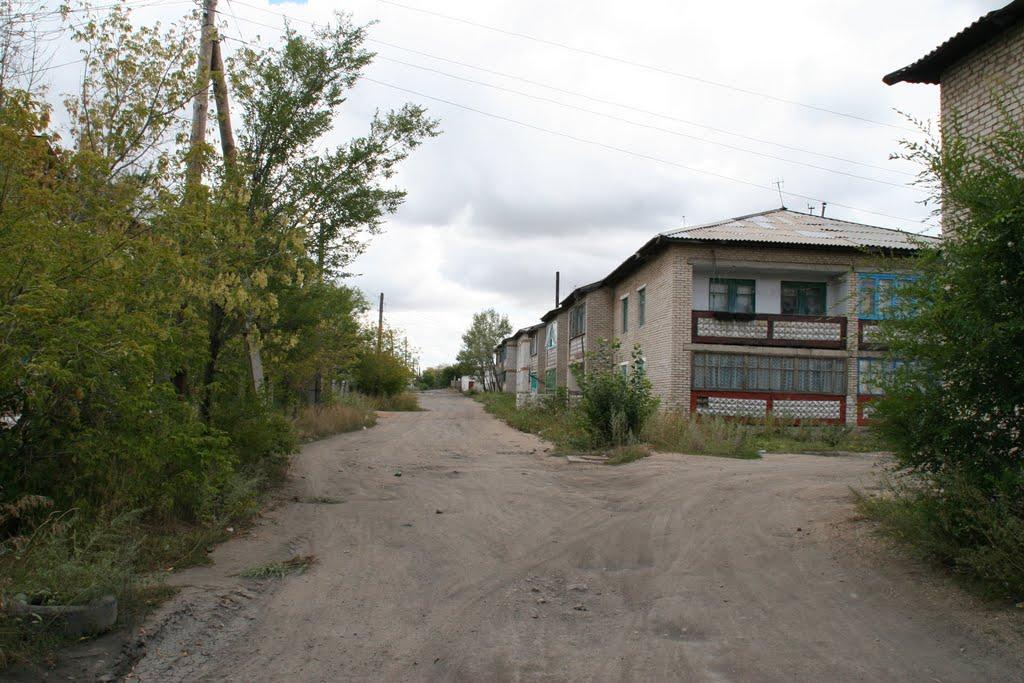 МСО - переулок Орловский, Горняк