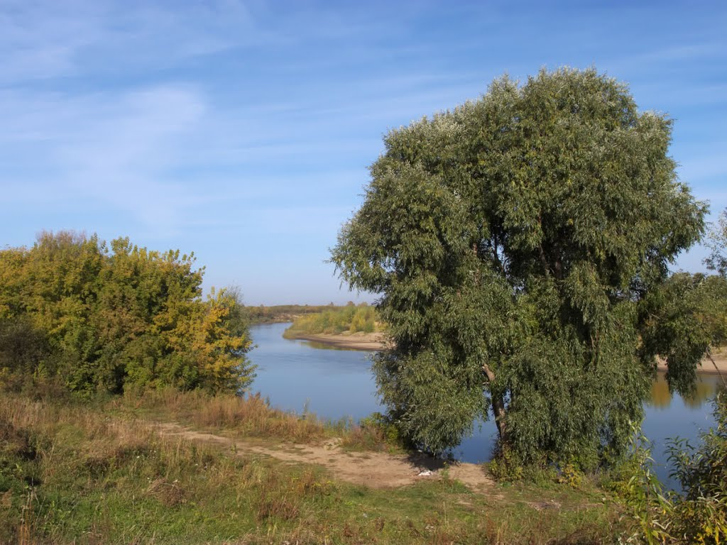 На берегу Чумыша, Заринск