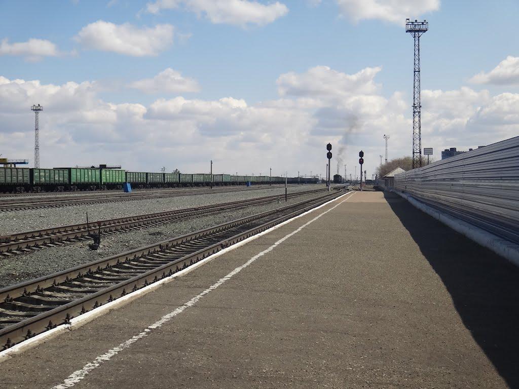 Станция Кулунда, Вид на восток, Кулунда